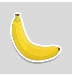 banana icon design vector image