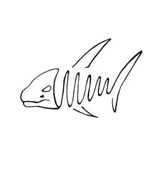 abstact hand drawing of fish in line art style vector image