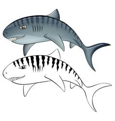 animal outline for shark vector image