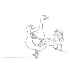 draw a continuous line three goose vector image