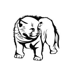 Frightened kitten vector