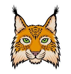 Lynx head vector