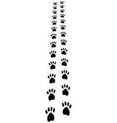 paw trail prints animal cat dog footprints vector image