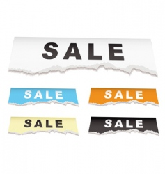 sale torn paper vector image