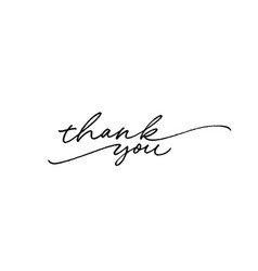 thank you ink brush lettering vector image