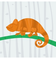 Chameleon sitting on a branch vector image