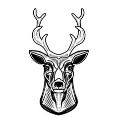 deer icon isolated on white background design vector image vector image