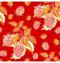 Pattern of red pink raspberry hand painted fruit vector