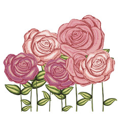 watercolor silhouette with set of roses flowers vector image