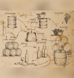 Wine production scheme vector