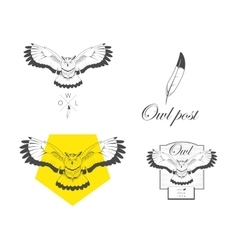 Logo owl design vector
