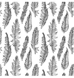 Seamless pattern with graphic detailed feathers vector