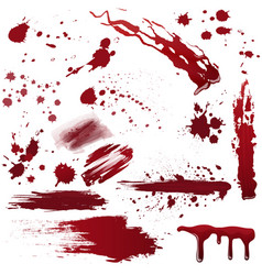 set of various blood or paint splatters realistic vector image