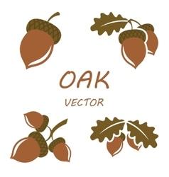 flat oak icons set vector image