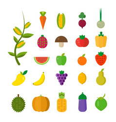 isolated vegetables set fruits vegetables organic vector image