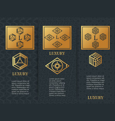 luxury design brochure flyers template with vector image