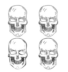 Set of four Hand Drawn Skulls vector image