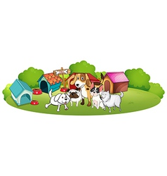 A group dogs gathering in front their house vector