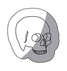 figure skeleton of the human skull icon vector image