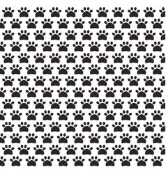 paw print pet pattern background vector image