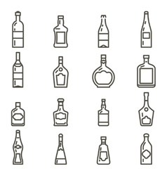 Bottles different types of alcohol icons set vector image vector image