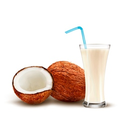 Coconut with a coconut milk cocktail vector image vector image