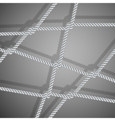 Stylish background with rope vector image vector image