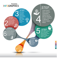 infographics business template elements vector image vector image