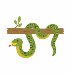 anaconda on a tree isolated vector image