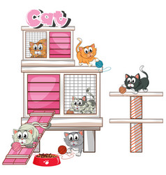 Cats playing in cage vector