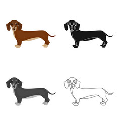 dachshund single icon in cartoon styledachshund vector image