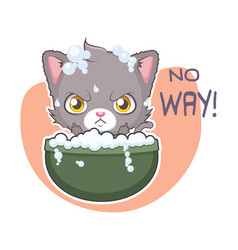funny sticker with cute gray cat - i refuse vector image