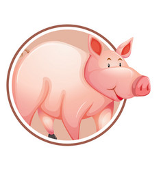 pig in circle banner vector image