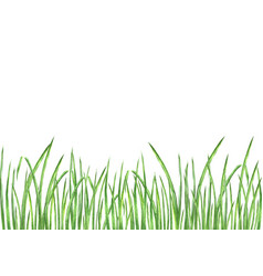 Watercolor green grass vector