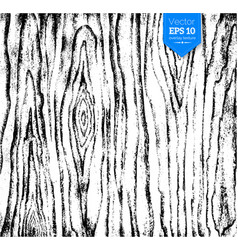 Wood texture for design overlays vector