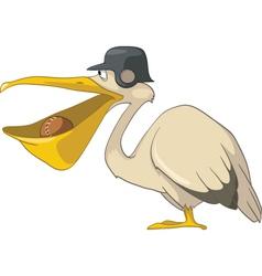 baseball pelican cartoon vector image