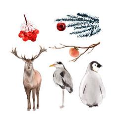 Caribou bird penguin watercolor design for vector