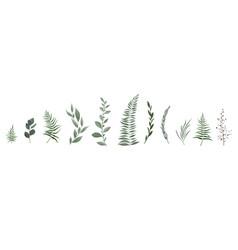 designer elements set collection of greeng vector image