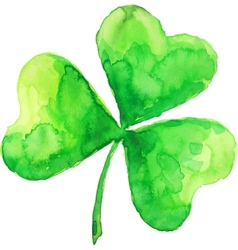 green watercolor painted clover vector image