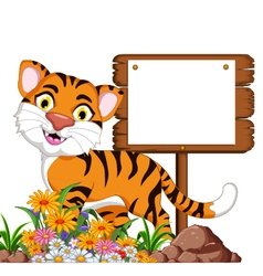cute tiger cartoon with blank sign vector image vector image