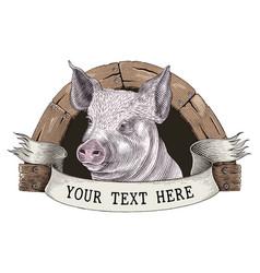 Pig farm logo hand draw vintage engraving style vector