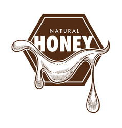 pure honey poster monochrome sketch outline vector image