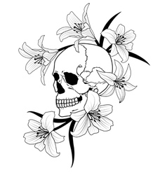 skull and lily vector image vector image