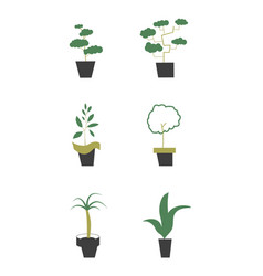 house plants in pots vector image