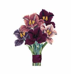 flower bouquet floral bunch design object vector image
