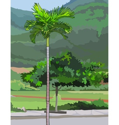Palm tree on a green background vector