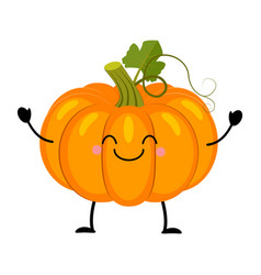 pumpkin in flat style isolat vector image