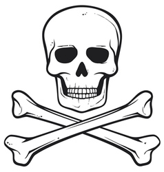 skull with crossed bones - pirate symbol vector image