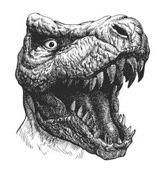 Tyrannosaurus dinosaur hand drawn eps8 vector