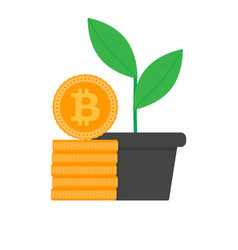 Growth bitcoin flat vector